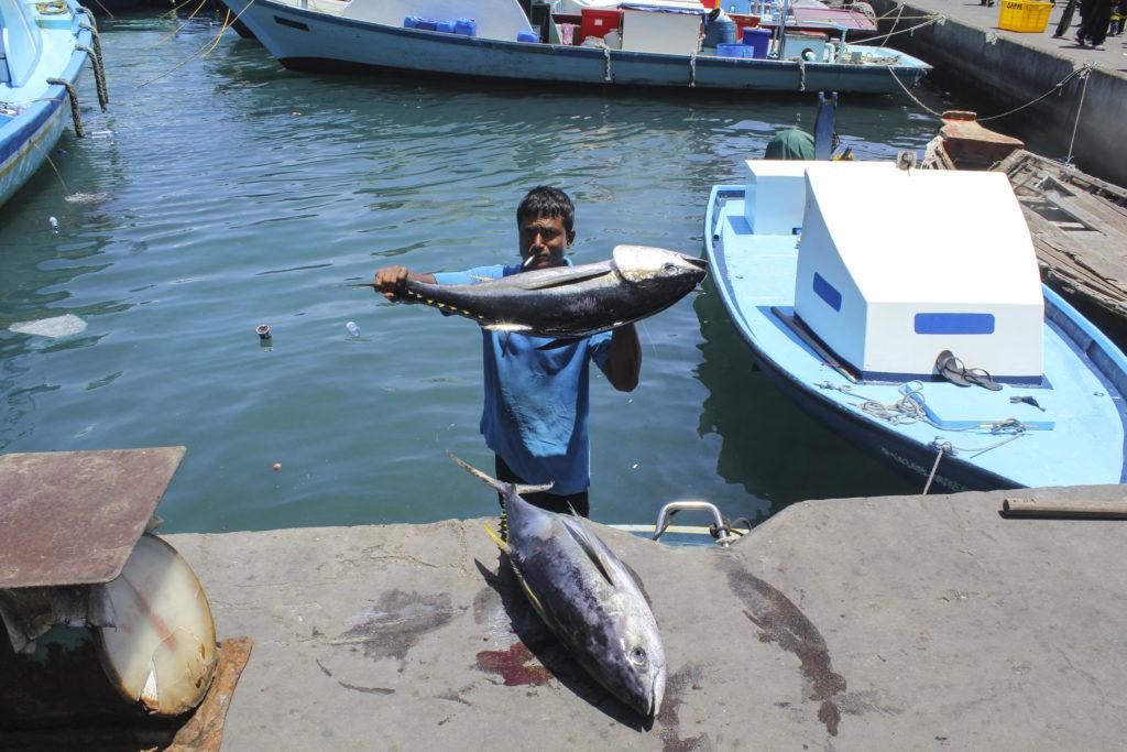 fishers in Maldives
